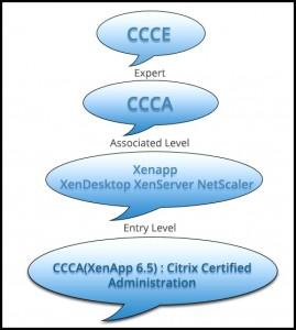 citrix multisoft systems