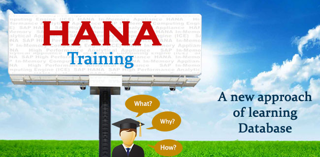 hana-Training-Multisoft-Systems