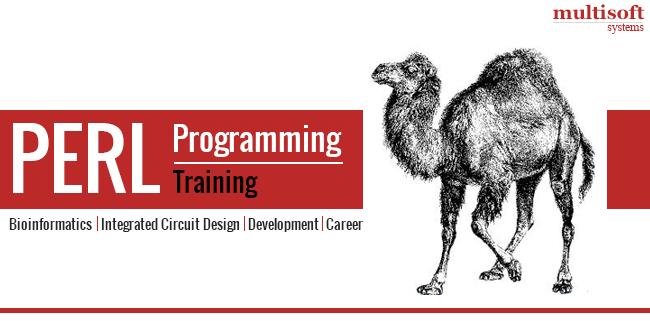 Perl-programming