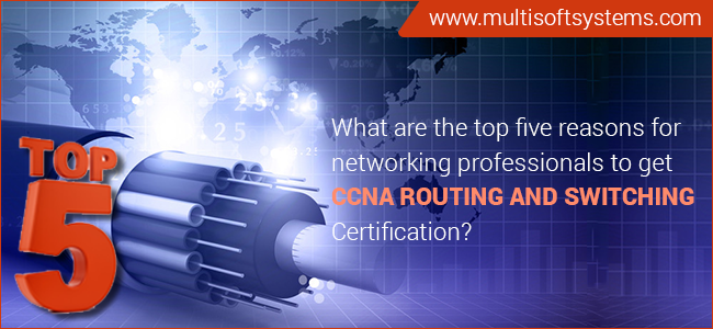 CCNA-Routing-and-Switching-training-in-Noida
