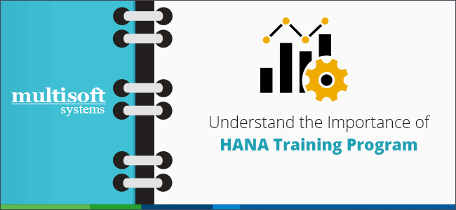 HANA-Training-program