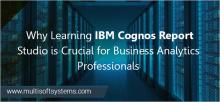 IBM-BI-Reporting-Fundamentals-Training-noida
