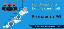 Primavera-training-multisoft-systems