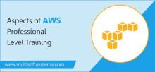 AWS-Professional-Level-Training-in-Delhi