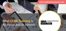 CCBA-Training-in-Noida