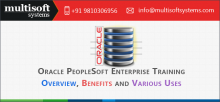 oracle-people-soft-training-in-noida