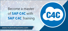 sap-c4c-training-in-delhi