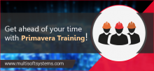 primavera-training-in-noida