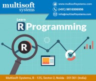 r-programimg-training-multisoft-systems