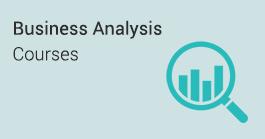 business-analysis-domain