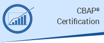 CBAP® Certification Preparatory Program