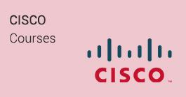 Cisco Training In Noida