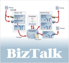 BizTalk Server Training Program