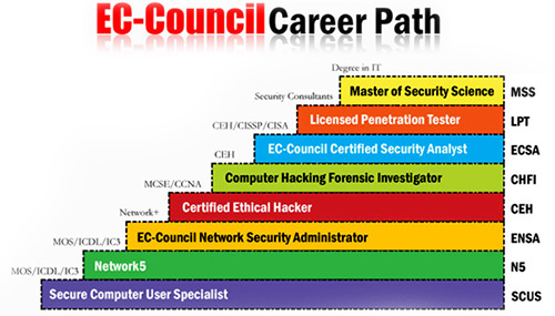 Certified Ethical Hacker Cyber Security Courses